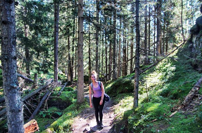Meraner-Höhenweg-Wald-Christine-Neder