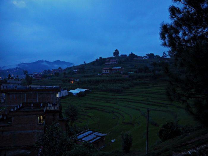 Urlaub in Nepal Panauti Reisfeld