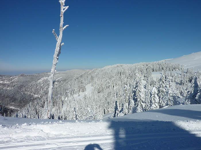 Schneewanderung_Aussicht