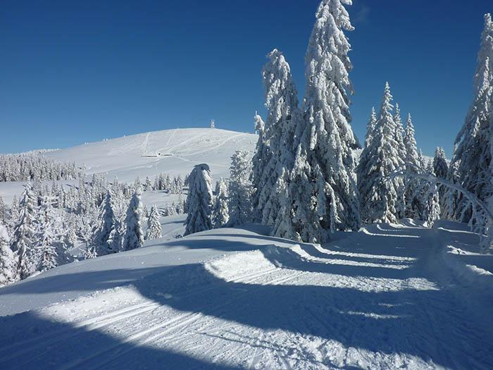 Schneewanderung_Winterweg