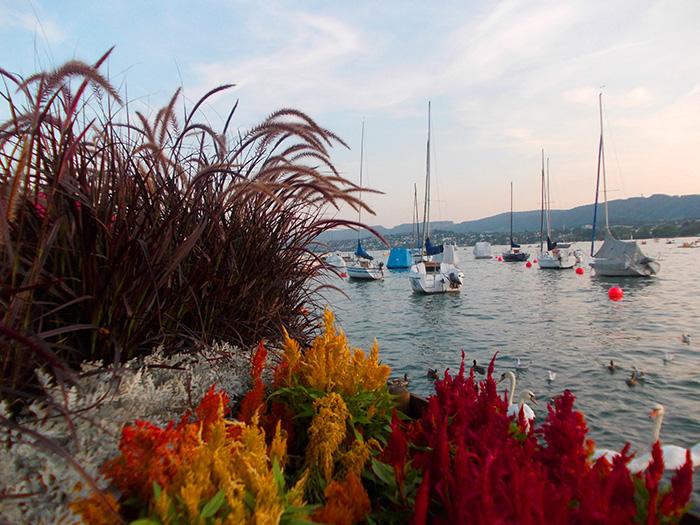 Schweiz-Zürichsee-Boote