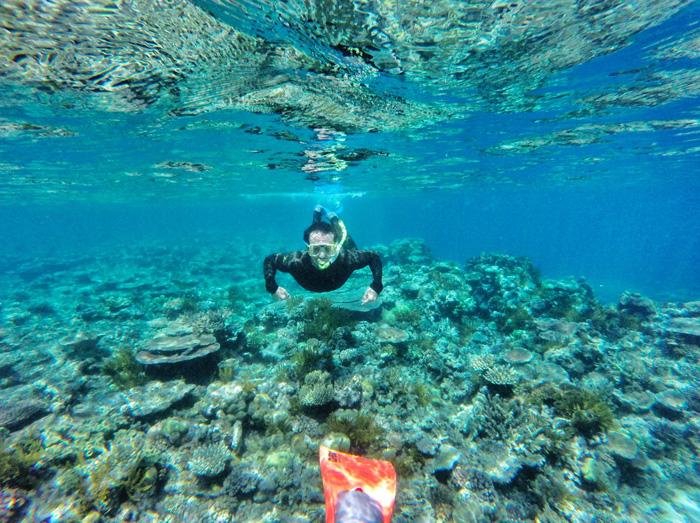 Scnorcheln-Great-Barrier-Reef