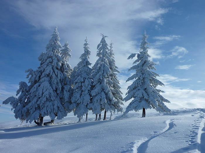Skiabfahrt_Gipfel