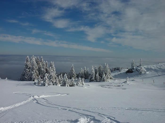 Skitour_Aussicht