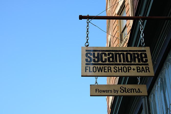 Brooklyn_Sycamore_DitmasPark