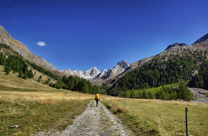 Wanderweg-Eisjöchl