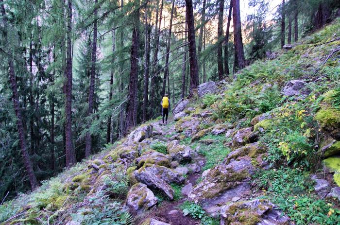 Wanderweg-Meraner-Höhenweg