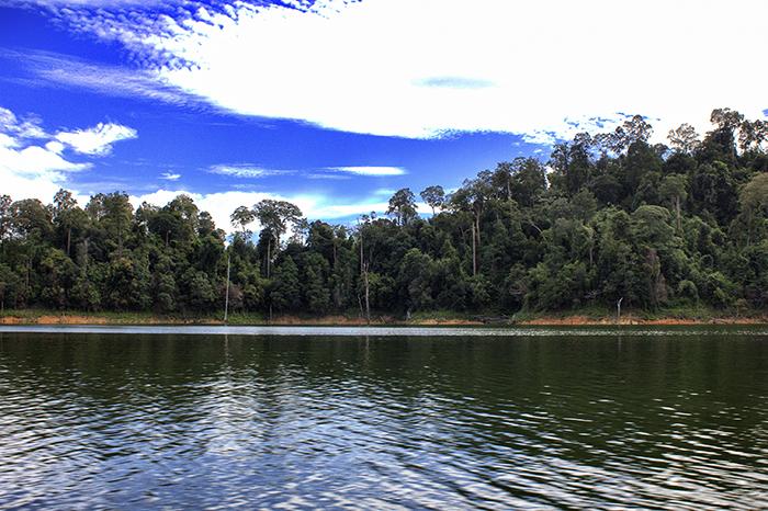 Malaysia Belum - regenwald