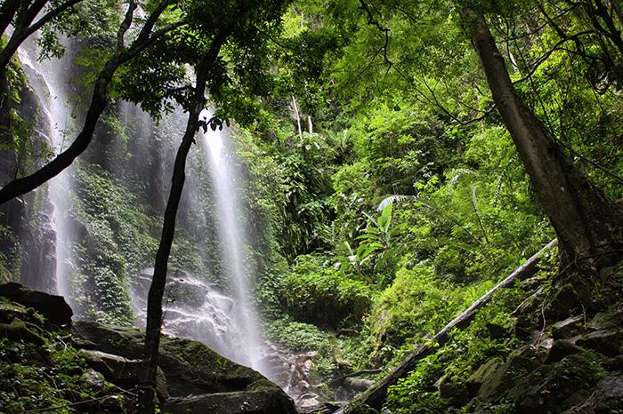 Malaysia-Belum---Wasserfall