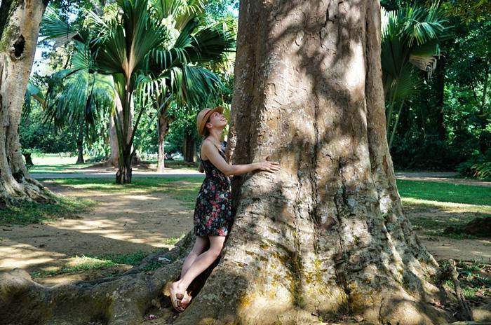 Baum-Christine-Neder