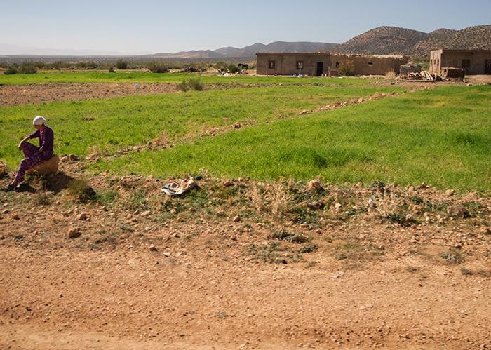 marokko_felder_bauern