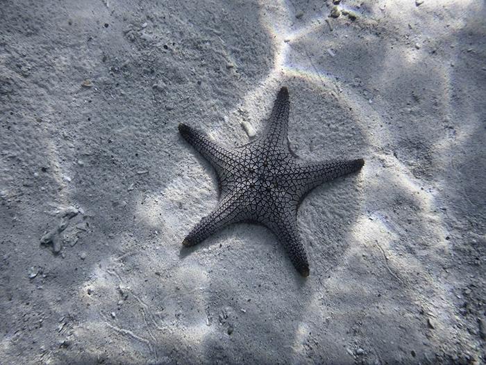 Mergui-Archipelago_06_Snapseed