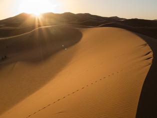 Sonnenaufgang_in_der_Wüste