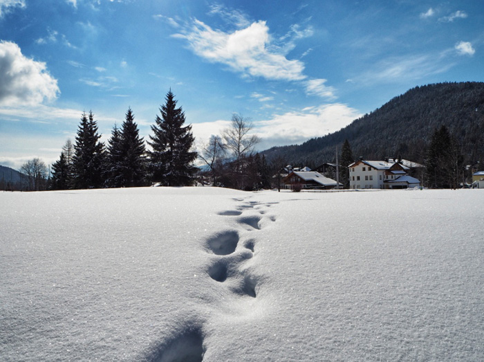 Wintersport-schneeschuhwandern