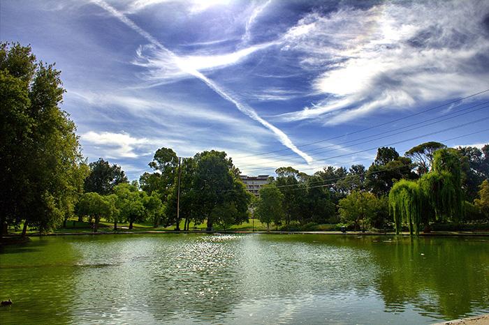 Adelaide-Insidertipps-Park_Snapseed