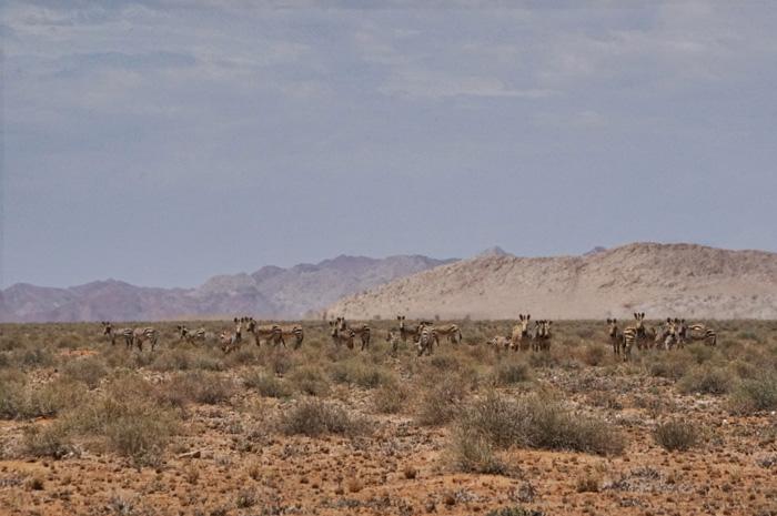 Berge-Namibia