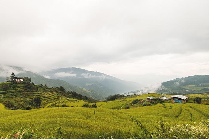 Bhutan---DSC_0391B