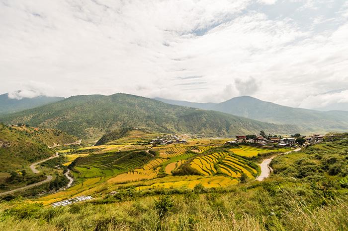 Bhutan---DSC_1127B