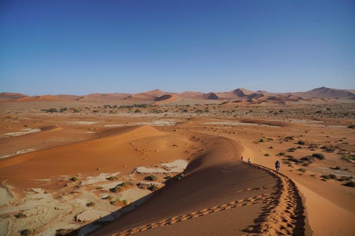 Dünen-in-Namibia