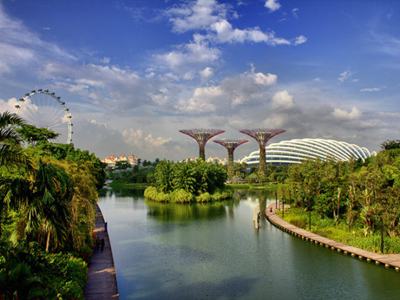 Ein-Tag-in-Singapur-Singapur-Flyer-und-Gardens-by-the-bay