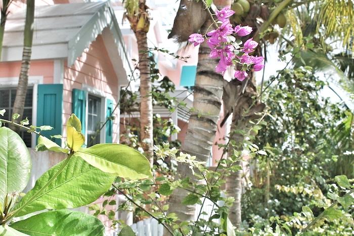Hope Town Bahamas
