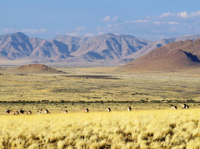 Landshcaft-Namibia-Steppe-Credit: Taleni Africa