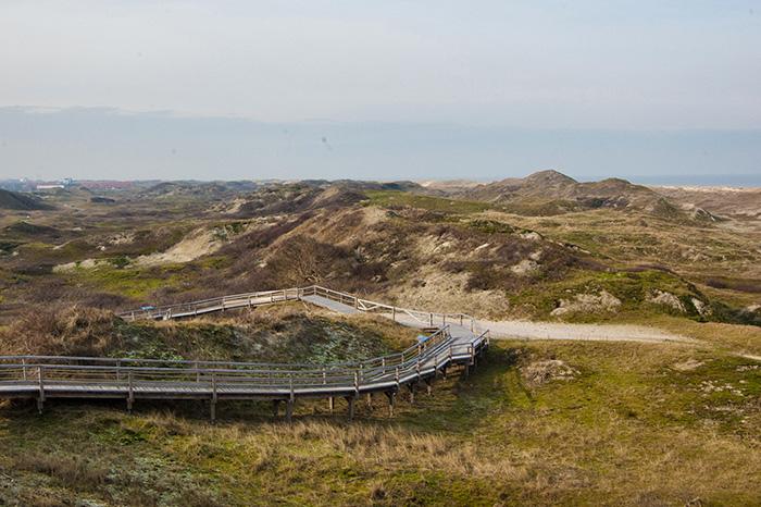 Norderney Sehenswürdigkeiten-Landschaft