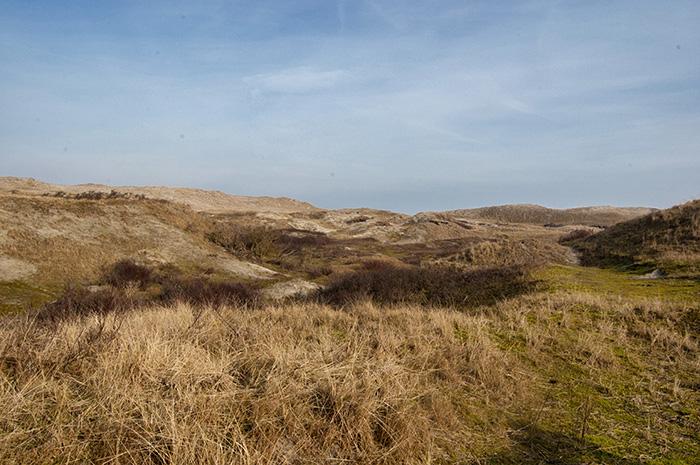 Norderney Sehenswürdigkeiten-Dünen1