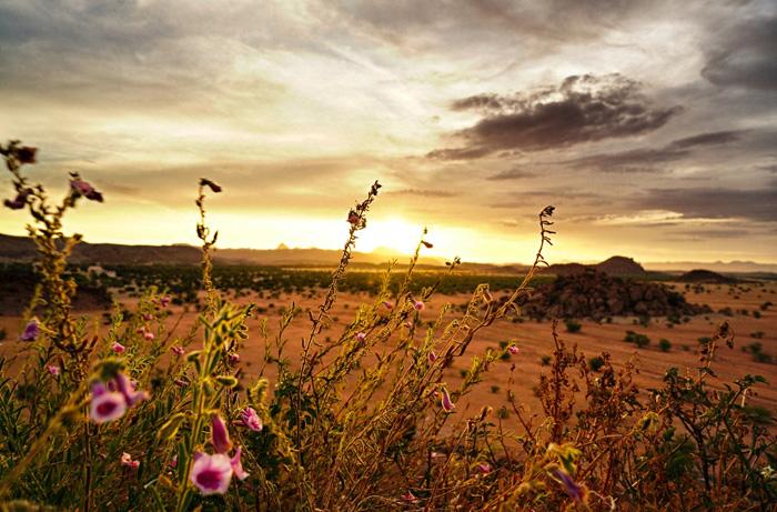 Sonnenuntergang-Camp-Kepwe-Afrika