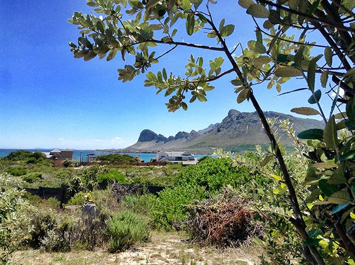 Suedafrika-Landschaft