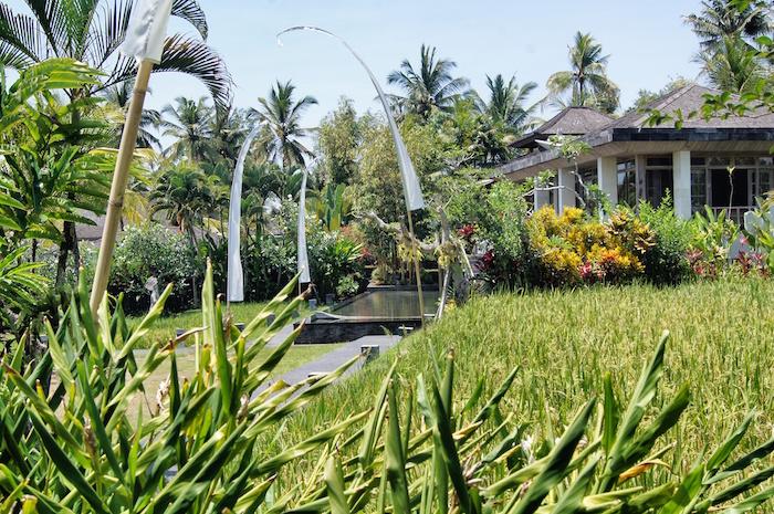 ubud-sehenswuerdigkeiten-villa