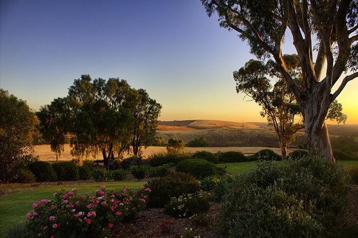 Barossa Valley Abendlandschaft