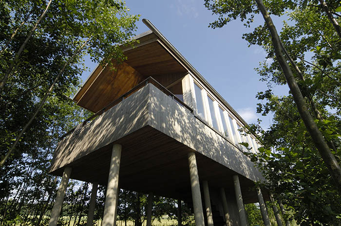 Baumhaus (Foto Hofgut Hafnerleiten)