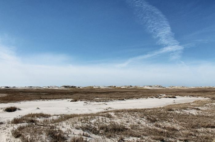 Dünen Nordsee