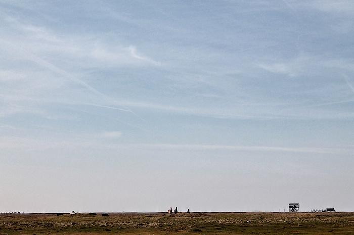 Pferde Nordsee