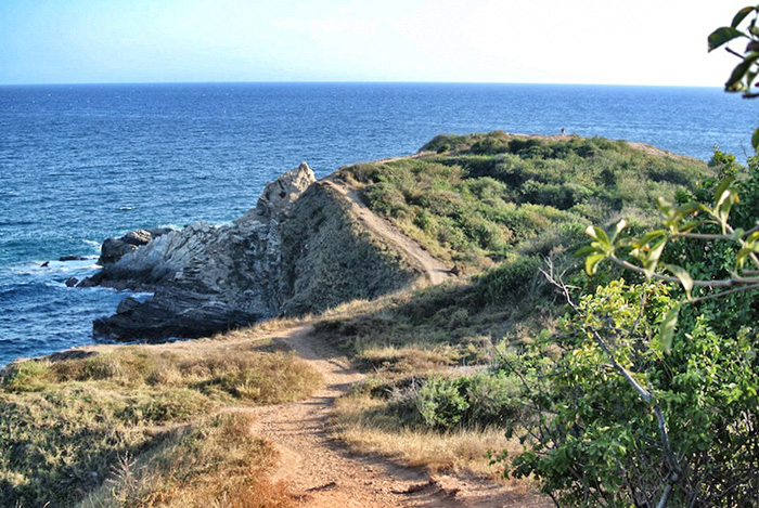 Punta-Cometa
