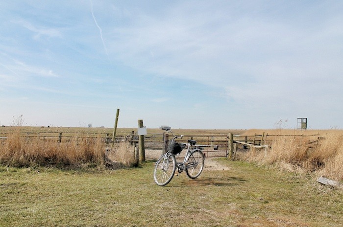 Rad fahren Nordsee