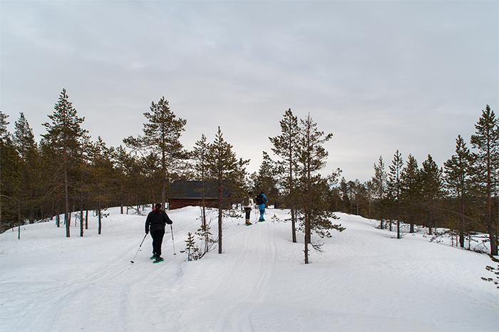 schneeschuhwanderung_lappland