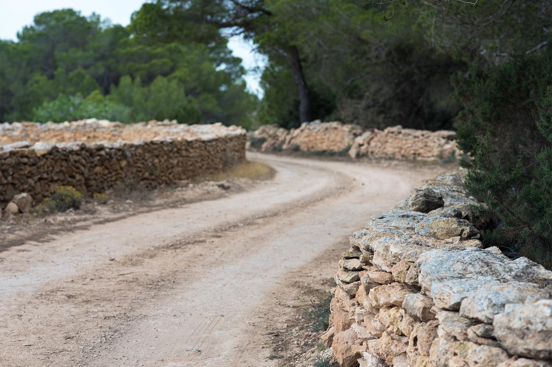 grüne_route_formentera