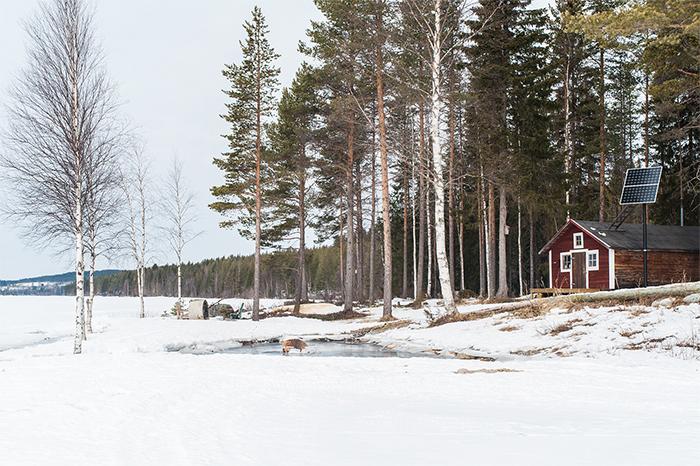lappland_nachhaltigkeit