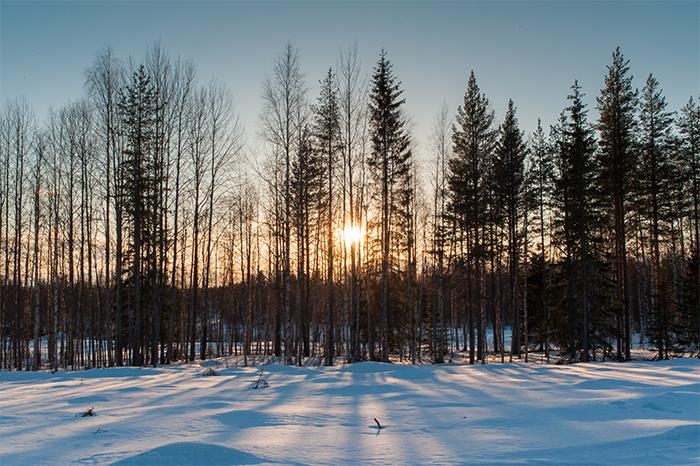 Entschleunigung in Lappland