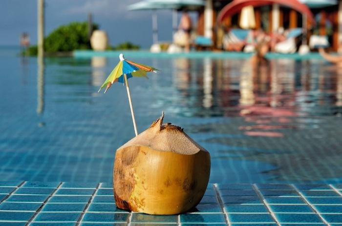 Malediven Kokosnuss