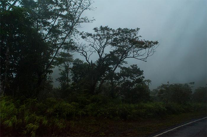 panama_fog_rain_road
