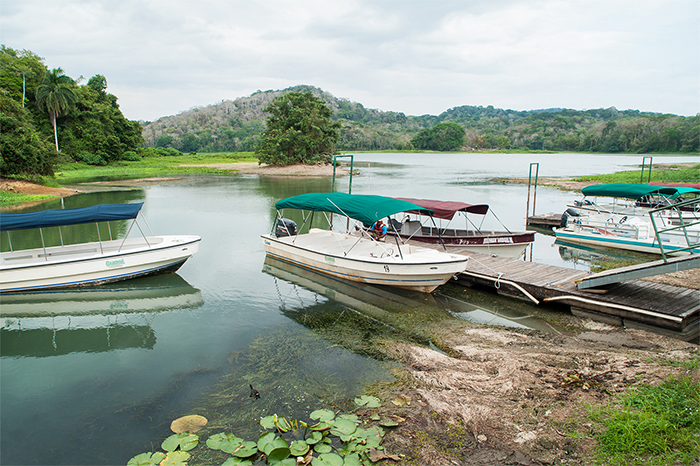 panama_lake_gatun