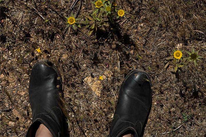 wandern_formentera_staub_boots