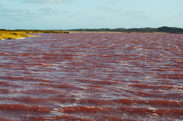 westaustralien-pinkersee