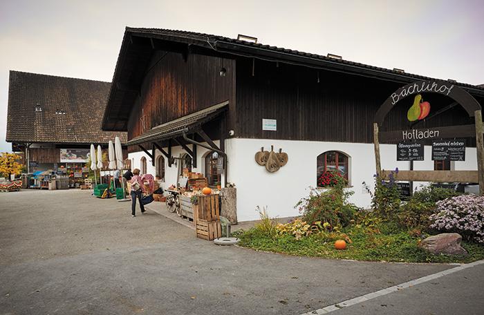 ausflugsziele-in-zürich-juckerfarm