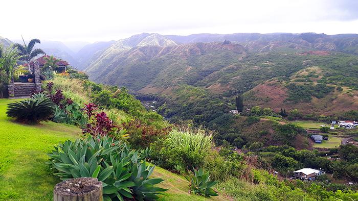 Maui-Road-to-Hana-Landschaft