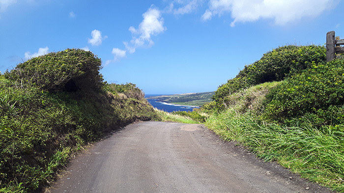 Maui-Road-to-Hana-Strasse