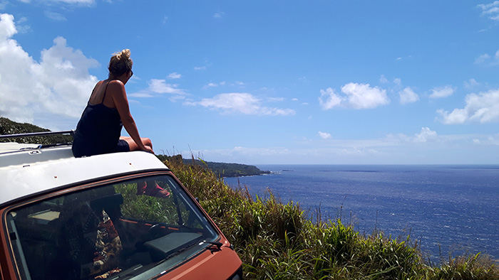 Maui-Road-to-Hana-Van
